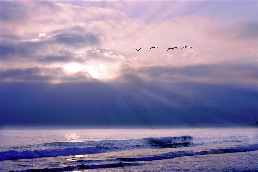 Beach Photograph - San Diego Sunset 2 by Alan Hausenflock
