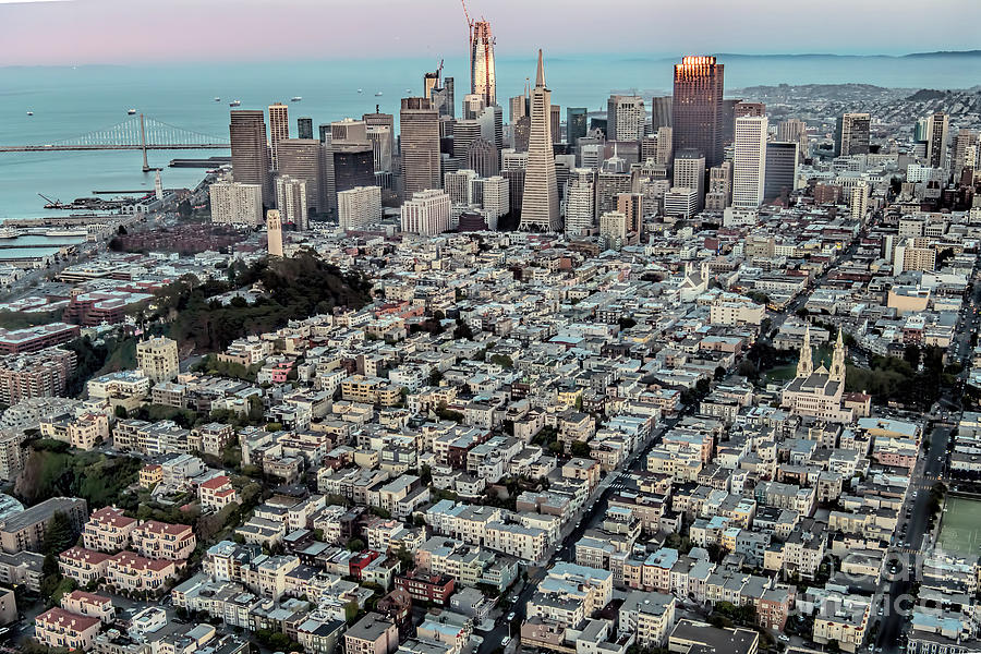 Coit Tower Photograph - San Francisco Skyline And Coit Tower by David Oppenheimer