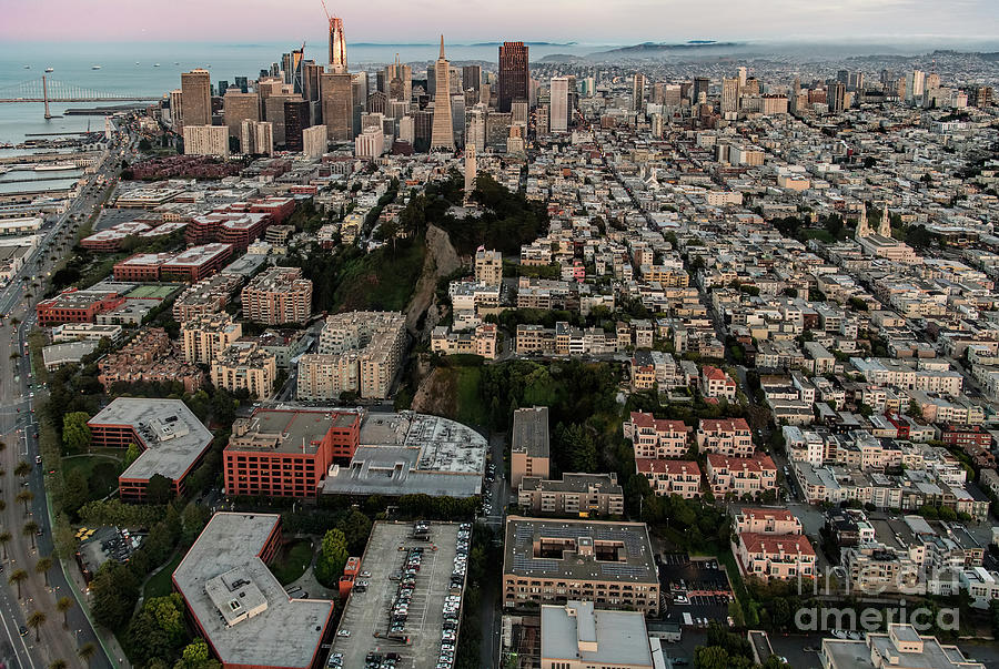 Coit Tower Photograph - San Francisco Skyline And Coit Towersan Francisco Skyline And Coit Tower by David Oppenheimer