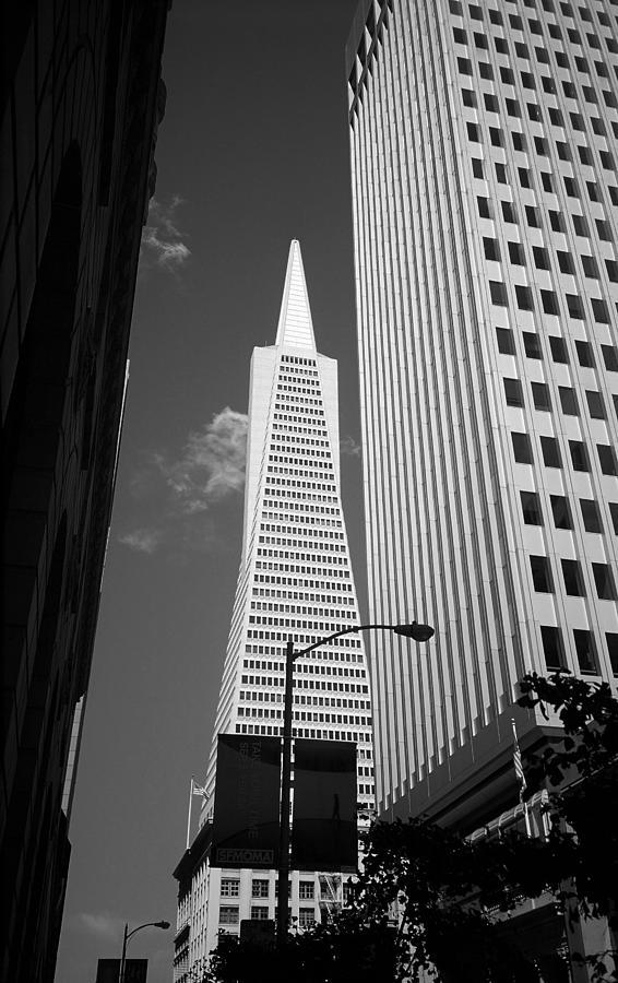 America Photograph - San Francisco - Transamerica Pyramid Bw by Frank Romeo