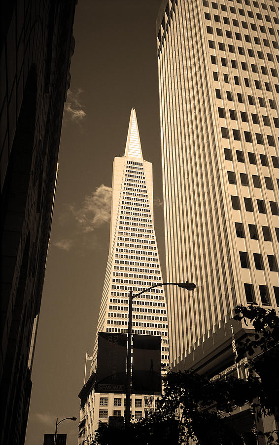 America Photograph - San Francisco - Transamerica Pyramid Sepia by Frank Romeo