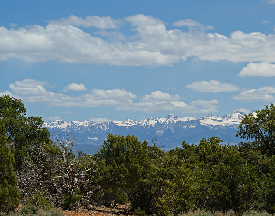 Colorado Photograph - San Juan Mountains by Ernie Echols