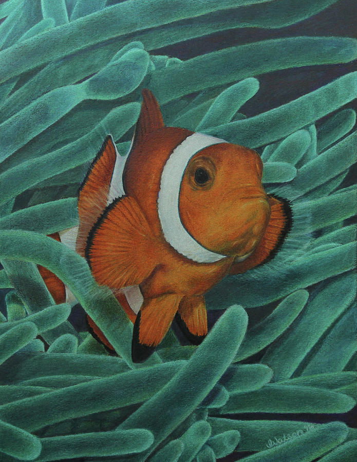 Clown Fish Painting - Sanctuary by Jennifer Watson