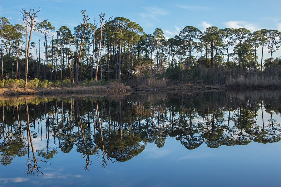 Lake Photograph - Sanctuary Reflection  by Julie Andel