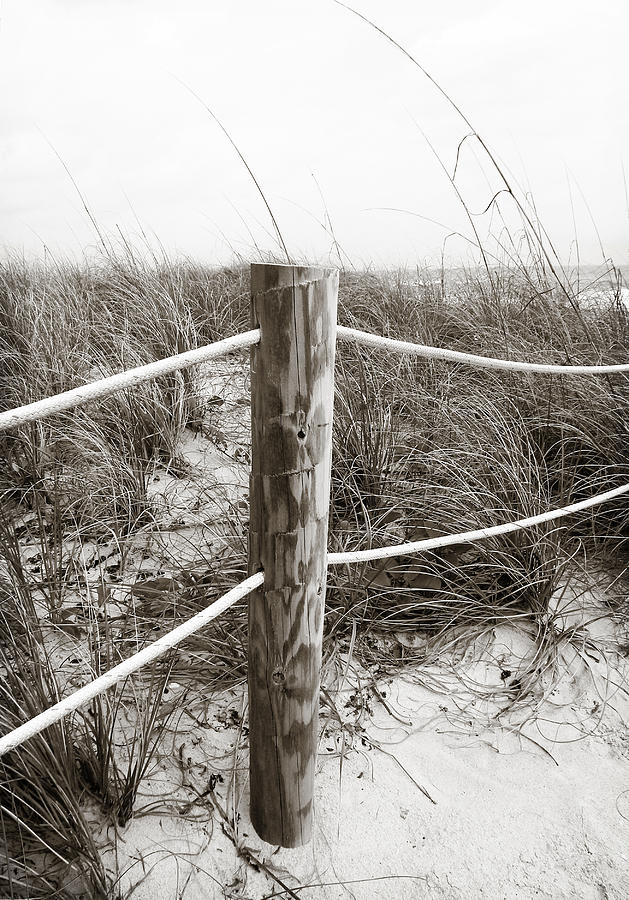 Seascape Photograph - Sand And Grass by Julie Palencia