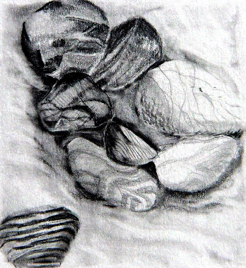 Drawing Drawing - Sand And Stone by Mindy Newman