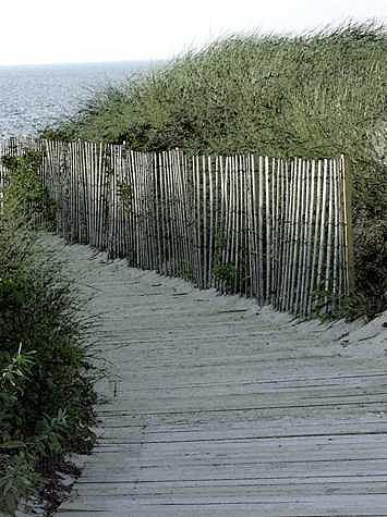 Cape Cod Photograph - Sand Board Walk by William Love