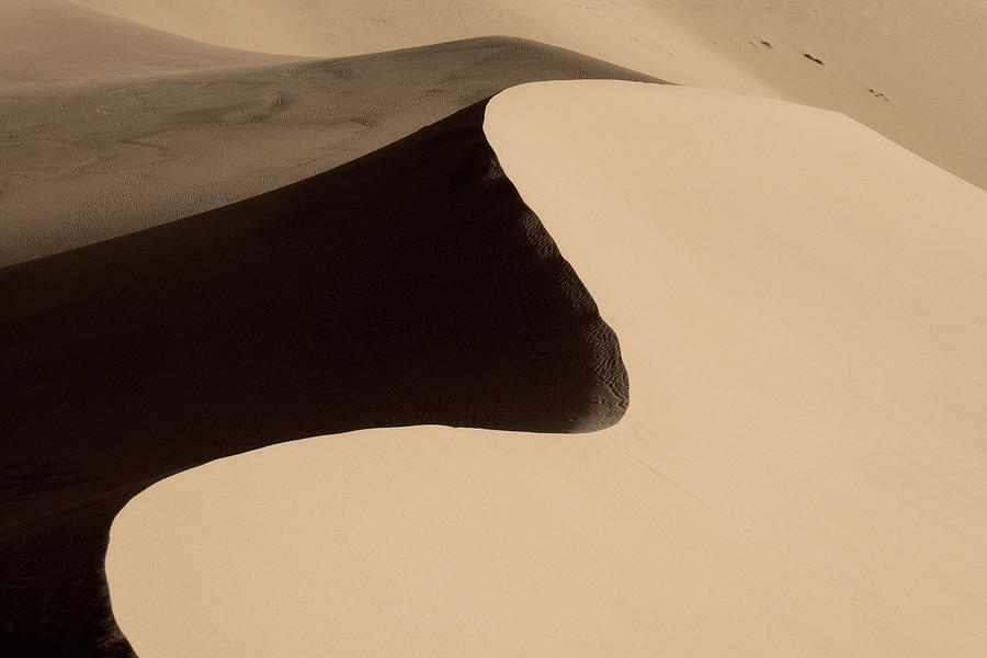 Sand Photograph - Sand by Chad Dutson