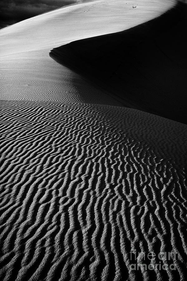 Dune Photograph - Sand Creation - Black And White by Hideaki Sakurai