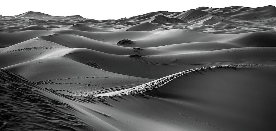 0306327fc6e Sand Desert - Art Photography - Black And White Photograph by Wall ...
