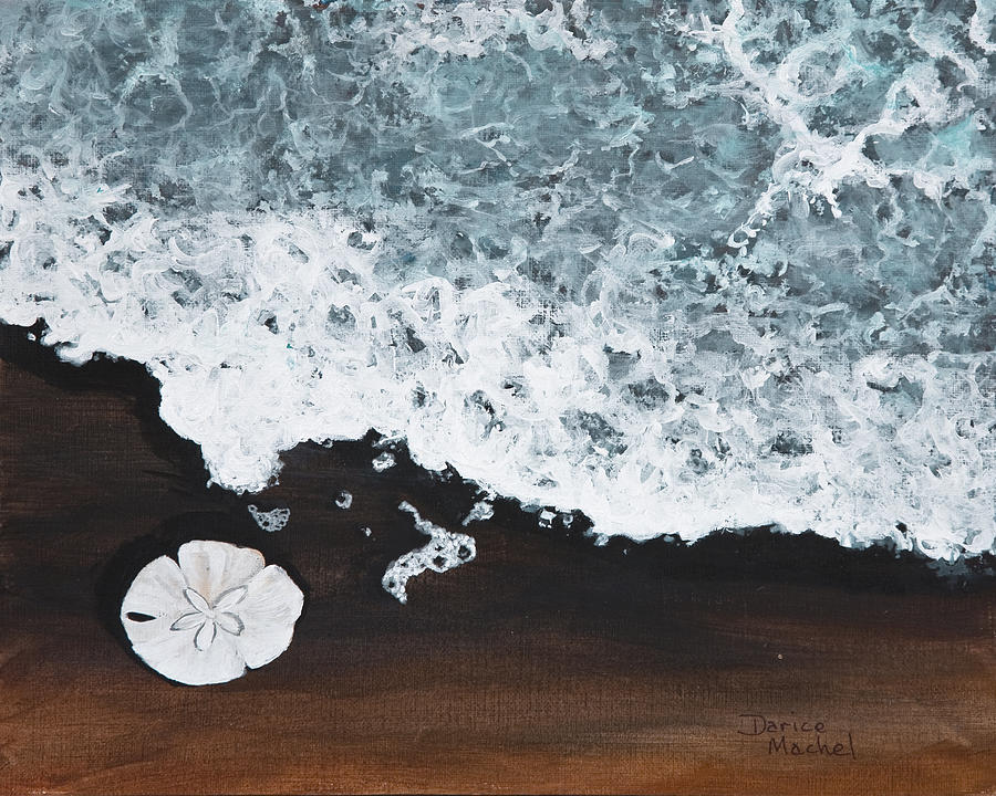 Darice Machel Mcguire Painting - Sand Dollar by Darice Machel McGuire