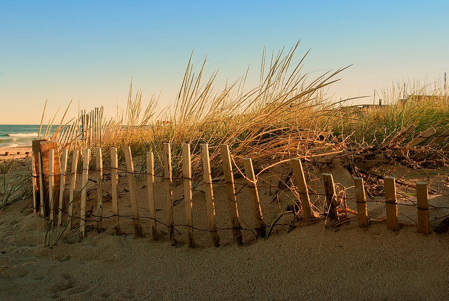 Sand Dune In Late September - Jersey Shore Photograph