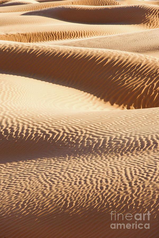 Desert Photograph - Sand Dunes 2 by Delphimages Photo Creations