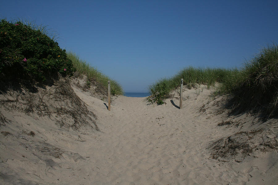 Beach Photograph - Sand Dunes Iv by Jeff Porter