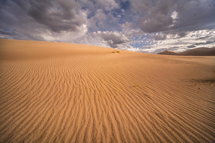 Sand Photograph - Sand Dunes by Michael Just