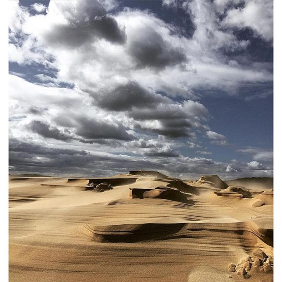 Australia Photograph - Sand Dunes  Hat Head National Park Nsw by Paul Dal Sasso