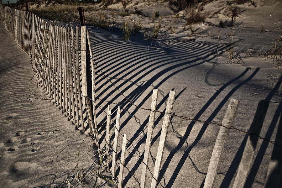 Sand Photograph - Sand Fence by Joel P Black