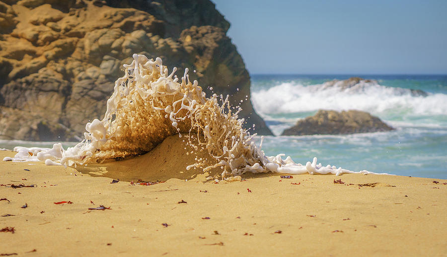 Sand Monster Photograph by Cameron Howard