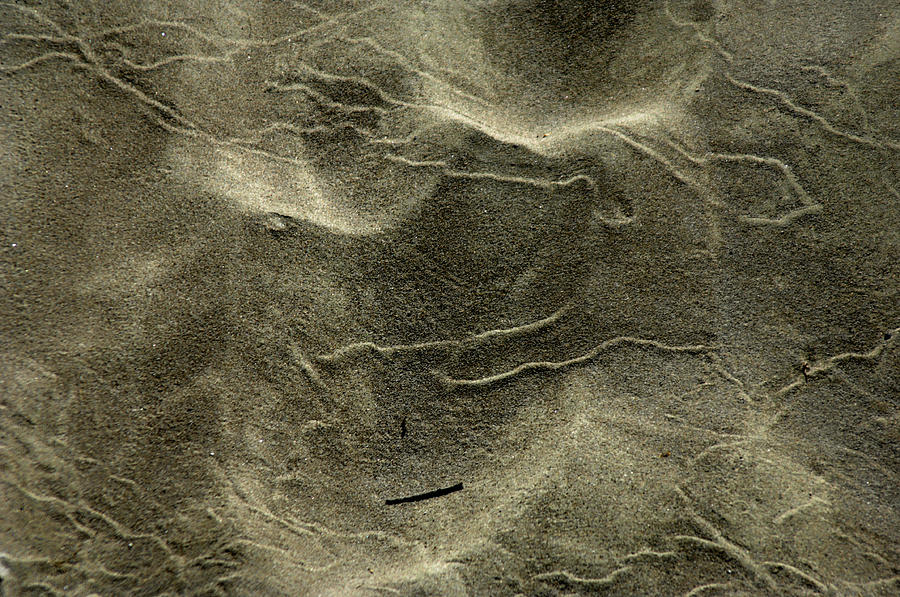 Sand Photograph - Sand Painting by Donna Blackhall