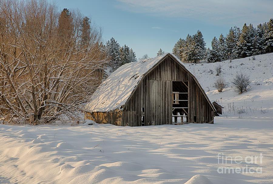 Idaho Photograph - Sanders Barn by Idaho Scenic Images Linda Lantzy