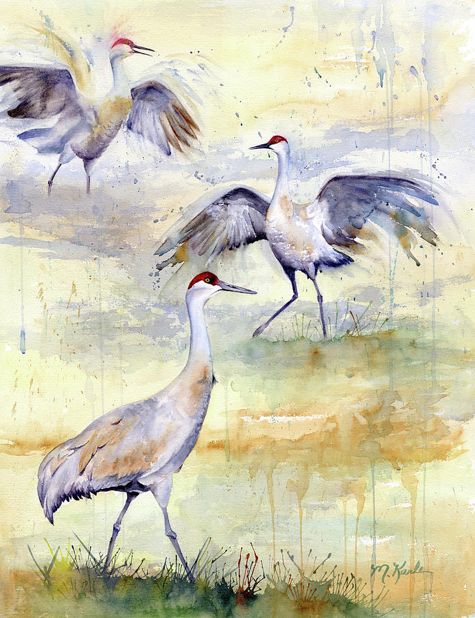 Wetlands Courtship - Sandhill Cranes by Marsha Karle