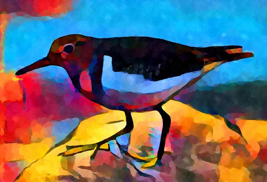 Bird Painting - Sandpiper by Chris Butler
