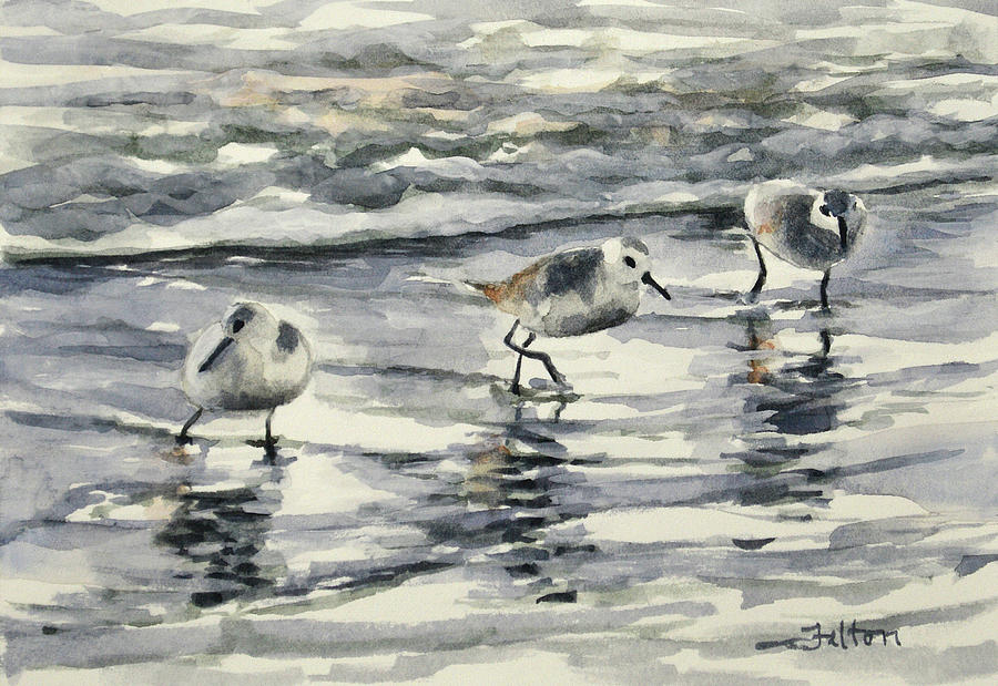 Sandpipers 3  12-11-17 by Julianne Felton