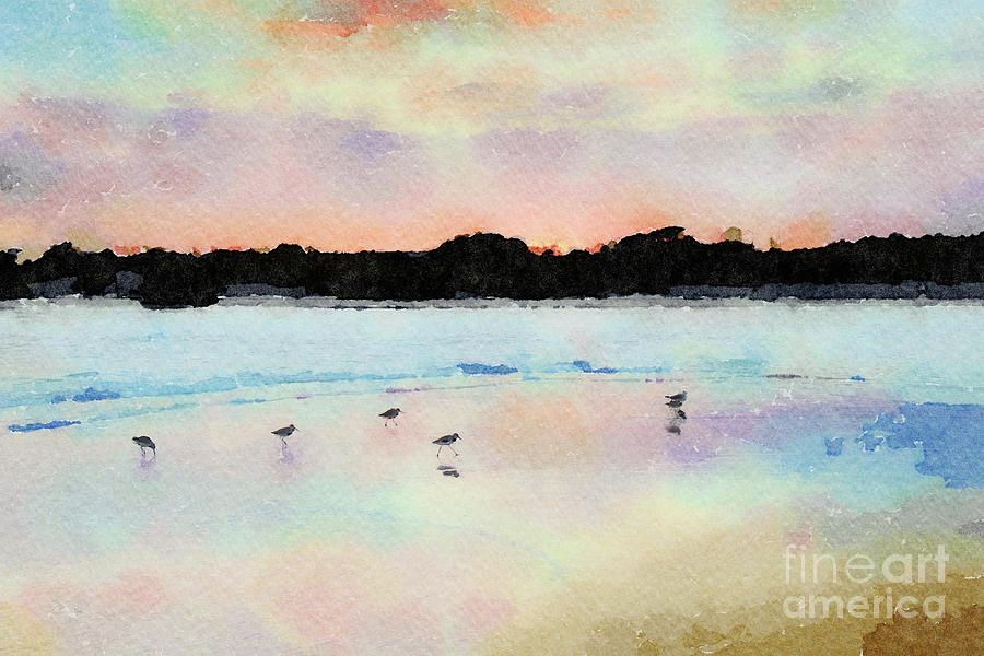 Sandpipers Digital Art