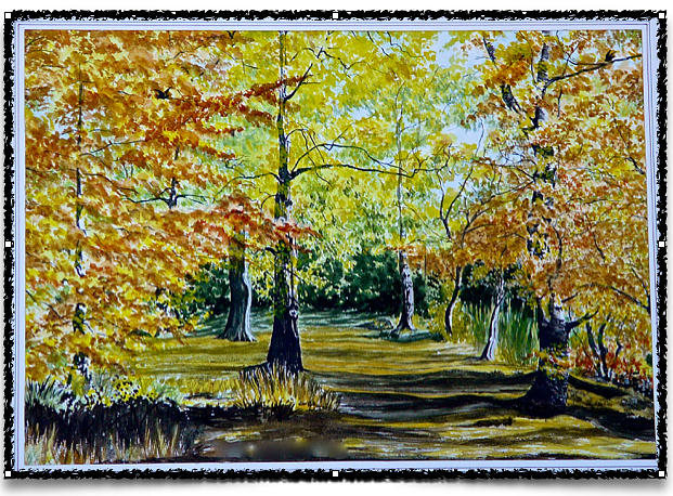 Sandringham Woods. Uk. Painting by SJV Jeffery-Swailes
