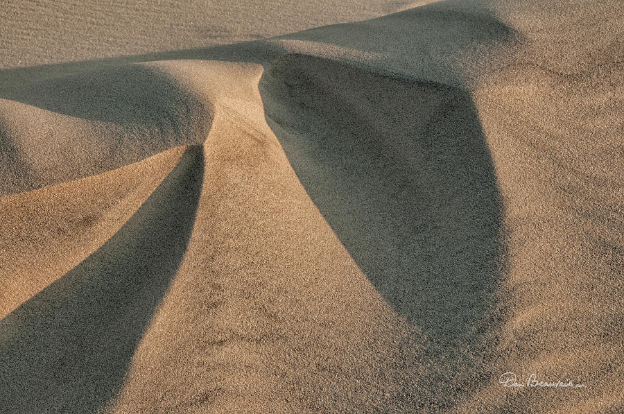 Sands Of Jockeys Ridge 1389 Photograph