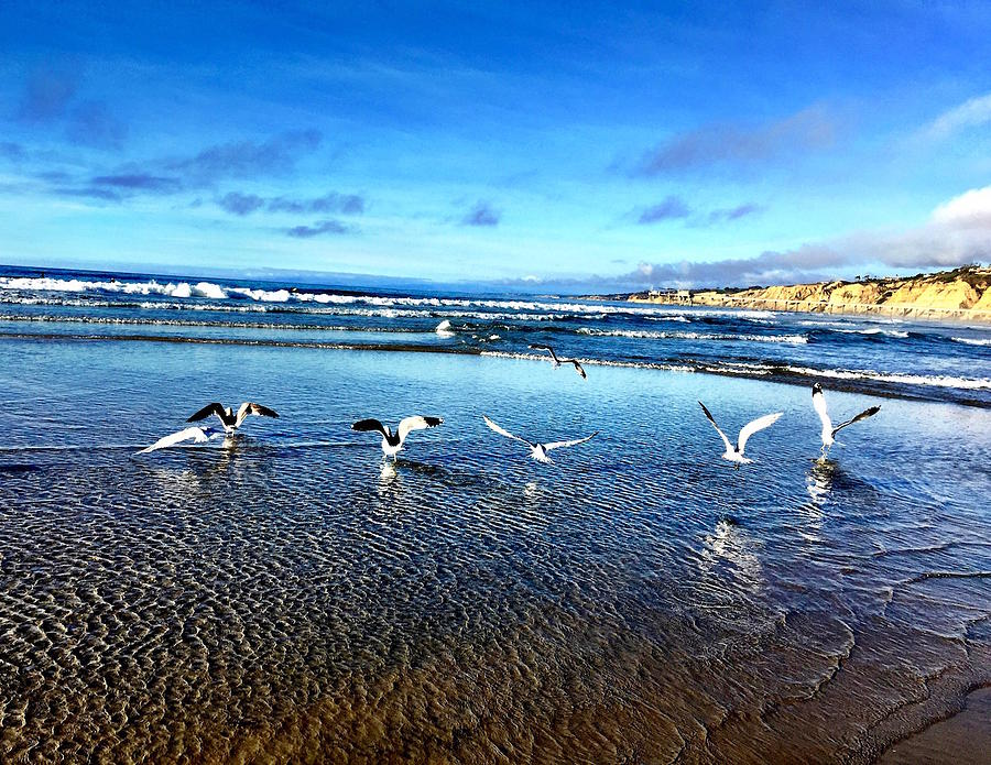 Beach Photograph - Sands of Time by Diane Sleger