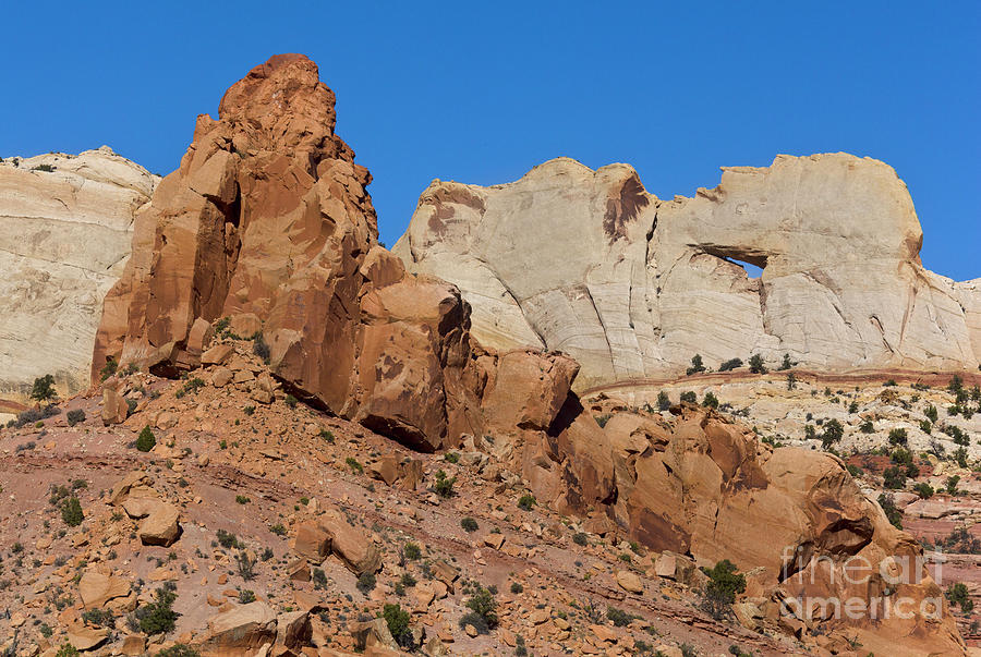 Sandstone Arch at Capitol Reef Photograph by Yva Momatiuk John Eastcott