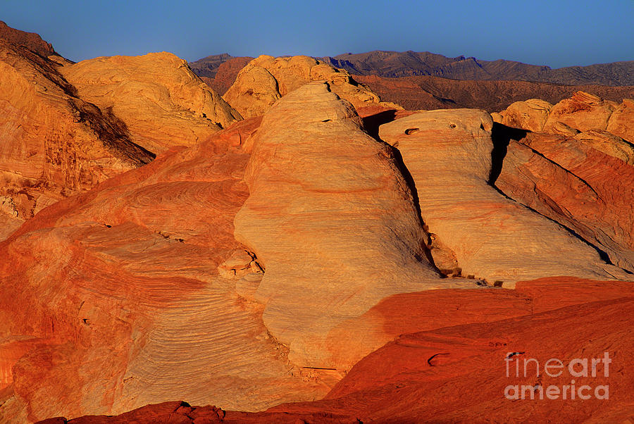sandstone formations in valley of fire state park nevada by Dave Welling