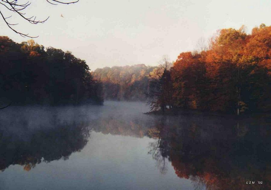 Fall Leaves Photograph - Sandy Mist by Lin Grosvenor
