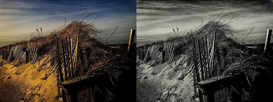 Sandy Neck Dunes Winter Light 2X by Frank Winters