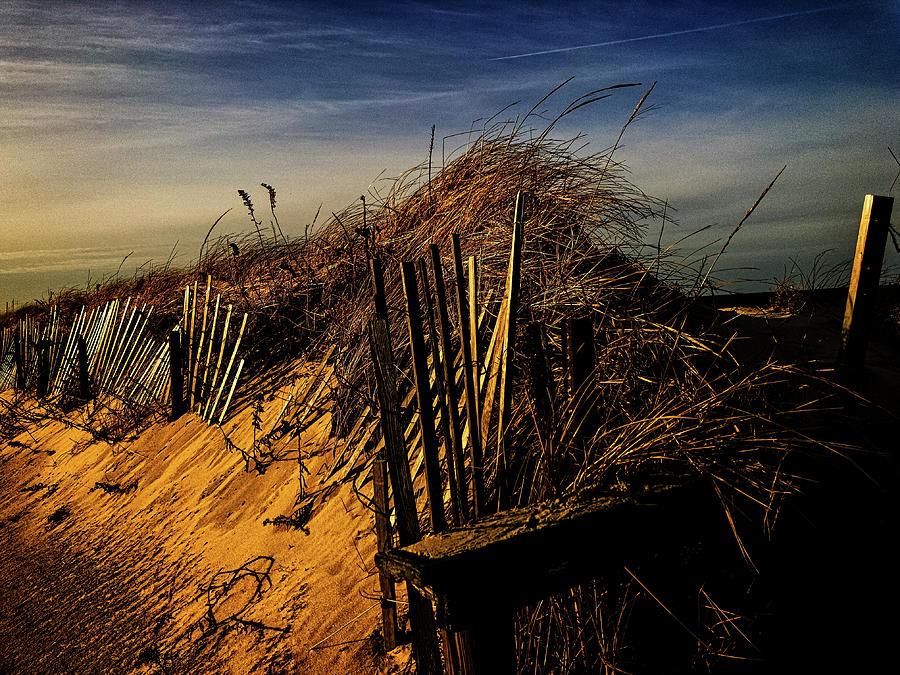 Sandy Neck Winter Light by Frank Winters