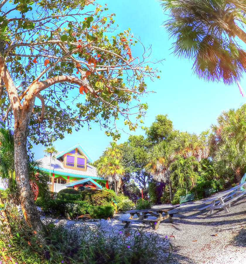 Sanibel Photograph - Sanibel And Captiva Visitor Center Iv by Tina Baxter