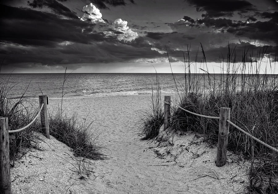 Sanibel Island Beach Access In Black And White Photograph by Greg Mimbs