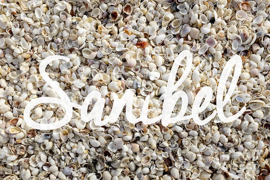Florida Photograph - Sanibel Island Seashells by Edward Fielding