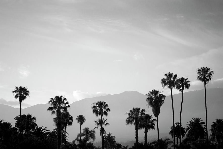 Santa Barbara I BW by David Gordon