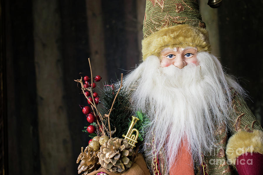 Santa Claus Photograph - Santa Claus Doll In Green Suit With Forest Background. by Cesar Padilla