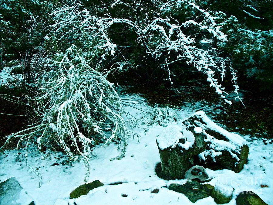 Santa Fe Photograph - Santa Fe Snow by Chuck Taylor