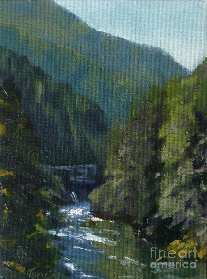 Santiam River Oregon by James H Toenjes