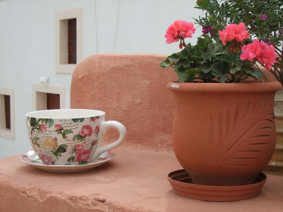 Santorini Greece Photograph - Santorini Greece Cafe Teacup And Flowerpot by Nikki Bordon
