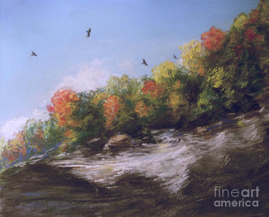 Soaring Over the North Rim, Autumn by Susan Sarabasha