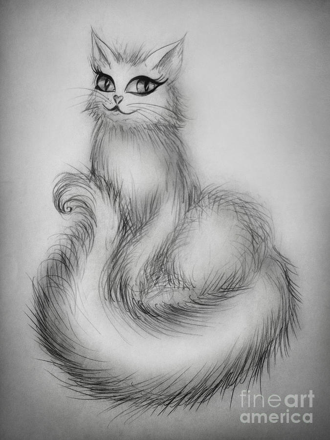 Sarah The White Persian Cat Drawing By Sofia Metal Queen