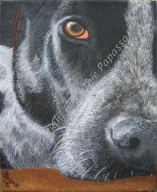 Dog Painting - Sarge by Kathie Papasso