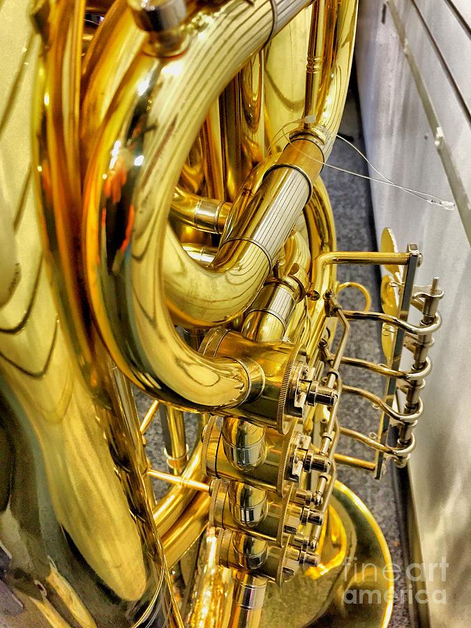 Brass Photograph - Sassy Brass by Sue M Marshall