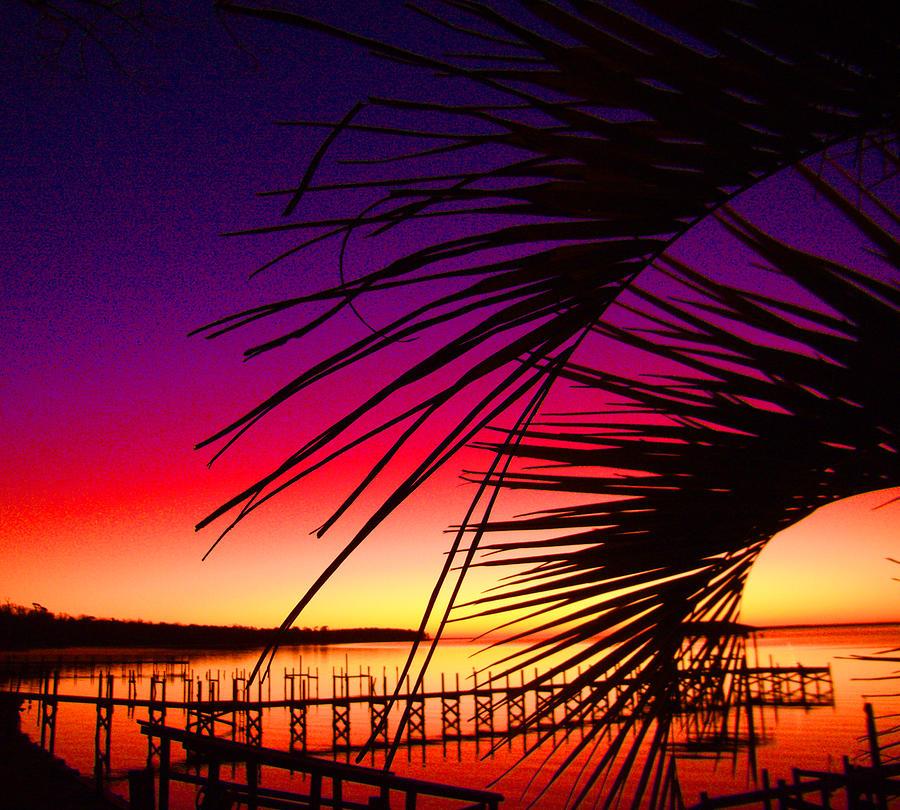 Sun Photograph - Saturated Sunrise by Nicole I Hamilton