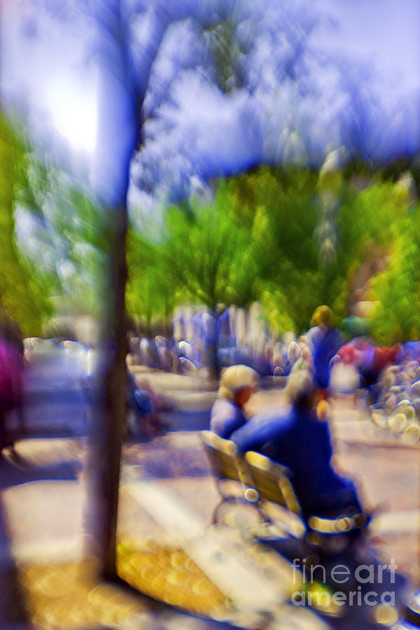 Afternoon Photograph - Saturday Afternoon II by Madeline Ellis